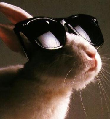 Endlich Brillen frei!